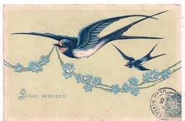 Cpa Gaufrée  Doux Souvenir Oiseaux - Fantasia