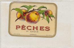 AN 840  / ETIQUETTE  - PECHES 1 Er CHOIX   N° 236 - Fruits Et Légumes