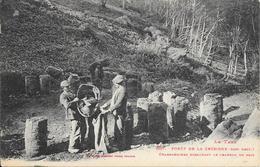 LE TARN - (81) FORET DE LA GRESIGNE - Charbonniers Ensachant Le Charbon De Bois - Ed:LABOUCHE FRÈRES - N°1027 - 2 Scans. - Frankrijk