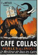 CP - Publicité -CAFÉ COLLAS - éléphant - Perles Des INDES - Le Meilleur De Tous Les Cafés . - Pubblicitari