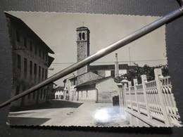 Italie - Pocenia - Udile -  Carte Photo Dentelée - Via Rome - Ed , Sorelle Cudini - Pocenia - B.E - Udine
