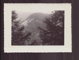 Photo ( 11.5 X 8.5 Cm ) Mont Qui Domine Vallorbe Suisse - Lieux