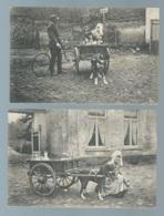 Voiture à Chien , Lot 2 Cpa , Laitière Flamande , Les Deux Amis   Maca0465 - Sonstige