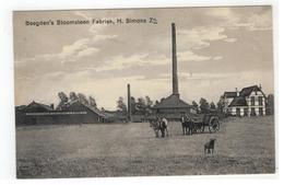 Beegden's Stoomsteen Fabriek, H.Simons Zn. - Paesi Bassi