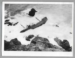PHOTO PRESS - VERT PRAIRIAL - 1956 ??  - SHIP - BOAT - Barche