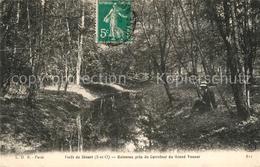 13480649 Foret_de_Senart Ruisseau Pres Du Carrefour Du Grand Veneur Foret_de_Sen - Francia