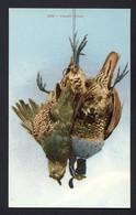 Valley Quail #1553 - Bird Hunting - Hunting