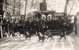 """AVIGNON 7 EME REGIMENT DU GENIE PENDANT LES FETES 1934 1935""""JEUX DE CHEVAUX  """" - Avignon"""