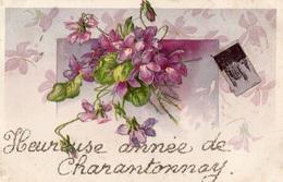 HEUREUSE ANNEE  DE CHARANTONNAY - Other Municipalities