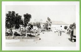 Timor - Parque (Fotográfico) - Timor Oriental
