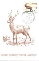 SAN PIETRO TERME ESPOSIZIONE FILATELICA  1992 MAXIMUM POST CARD (GENN200288) - Esposizioni Filateliche
