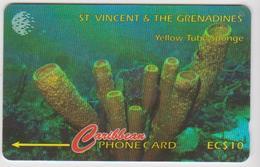 #07 - CARIBBEAN-019 - ST. VINCENT & THE GRENADINES - YELLOW TUBE SPONGE - San Vicente Y Las Granadinas