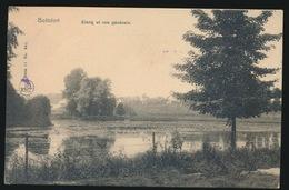 BOITSFORT  ETANG ET VUE GENERALE - Watermael-Boitsfort - Watermaal-Bosvoorde