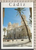 108125GF/ CADIZ, Catedral Nueva - Cádiz