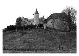 ANDERT-ET-CONDON - Château - France