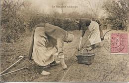 CPA. LA VIE AUX CHAMPS. 1905. - Landwirtschaftl. Anbau