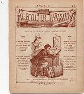 L'écolier Parisien - Animaux - N°9 - Simples Modèles De Dessin Avec Esquisse - Collections