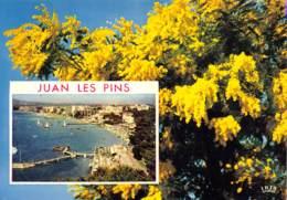 CPM - 06 - JUAN LES PINS - Juan-les-Pins