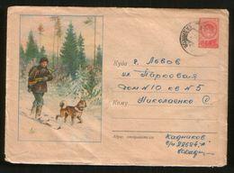 Russia USSR 1958 Stationery Cover Fauna, Hunter Skiing With A Dog (husky) - Hunde