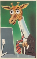 AK - Giraffe Im Büro - Mit Wackelaugen - 1960 - Humor