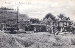 Agriculture - Auvergne - Batteuse De Blés - 1905 - Cultures