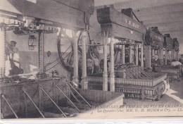 (51) VENDANGES ET TRAVAIL DU VIN EN CHAMPAGNE . Les Pressoirs ( Chez MM. G.H. MUMM & Cie) - Vigne