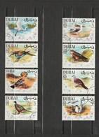 Dubai - 8 Timbres Les Oiseaux - Année 1968 - YT - 100 A-D - 100 A-H - 100 A-F - 100 A-E - 100 A-B - 100 A-A - 100 A-G - Dubai