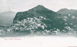 Capri Panorama  Edit Richter   Undivided Back - Altre Città