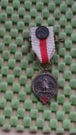 Medaille :Netherlands  - Rode Kruis Bloeddonormedalle (20 X), Miniatuur 1971-1977 - Nederland