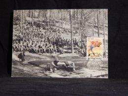 Finland 1993 Wrestling Maxicard__(U-2168) - Cartes-maximum (CM)