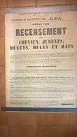 Affiche Recensement Des Chevaux, Juments, Mulets... - Département Du Jura - Format 50 X 71 Cm - 1934 - Afiches