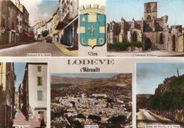 B63808 Cpm Lodève - France
