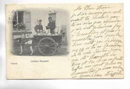 Laitière Flamande - Carte Précurseur - Belgique