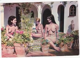 43100 -    Nus  Féminins - île Du Levant   16-26 - Beauté Féminine D'autrefois (1941-1960)