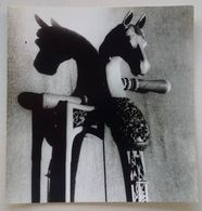 Antique Musical Instrument Vieille Instrument De Musique Horse's Head Tête De Cheval Mongolie Musée Poznań  Press Photo - Oggetti