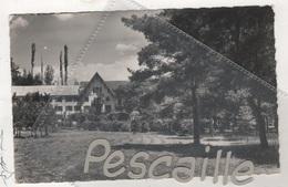 04 ALPES DE HAUTE PROVENCE - CP BEAUVEZER - L'ALP-HOTEL - EDITION A.D.I.A. NICE N° 5-61 CLICHE MIC - CIRCULEE EN 1964 - Autres Communes