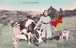 Souvenir Des Ardennes - Non Classés