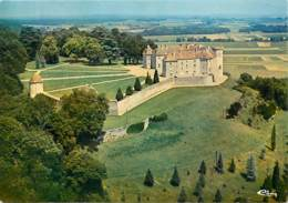 70 - Ray Sur Saone - Le Château - Vue Aérienne - Carte Neuve - Voir Scans Recto-Verso - Other Municipalities