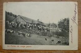 FERME ROUGE N°1 - France