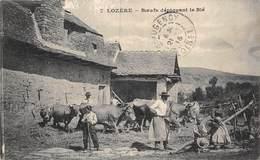 20-529 : LOZERE. BOEUFS DEPIQUANT LE BLE.  DEPIQUAGE. MOISSON. AGRICULTURE. - Ohne Zuordnung