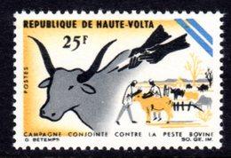 UPPER VOLTA - 1966 CATTLE PLAGUE 25F STAMP FINE MNH ** SG 199 - Upper Volta (1958-1984)