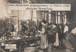 Veneto - Treviso - Vittorio Veneto - 1° Guerra Mondiale - Filatura Di Seta Italiana Sotto Amministrazione Austriaca - - Treviso
