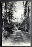 CPA 29 HUELGOAT - Sous Bois à La Mare Aux Sangliers - ND 1750 -  Réf. T 150 - Huelgoat