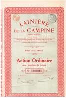 Titre Ancien - Lainière De La Campine - Société Anonyme - Titre De 1925 - Textiel