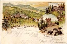 Lithographie Schwarzburg Im Schwarzatal Thüringen,Schweizerhaus, Helenensitz, Schloss, Am Eberstein - Deutschland