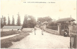 Dépt 14 - LUC-SUR-MER - Le Marais - (Bréchet, édit., N° 419) - Luc Sur Mer