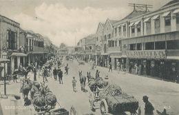 Barbados  Roebuck Street  Attelages Mules Edit Plimmer - Barbades