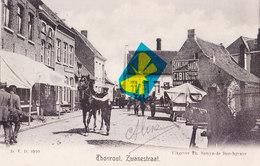 THOUROUT - Zwanestraat - Torhout