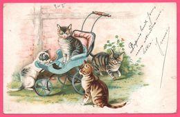 Litho - Chat - Chats - Chaton - Chatons - Poussette - 1904 - Cats