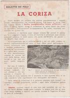 8634.  La Coriza - Malattia Dei Polli - Per Dr. Di Favria Canavese Torino - Cartoncino 15x10  Industrie Fiorenzuola Arda - Vieux Papiers